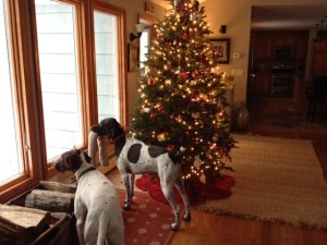 Christmas tree with Dogs
